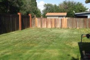 Photo #1: Redeemed Lawn Care - Hedge Trimming/Fertilizing/...