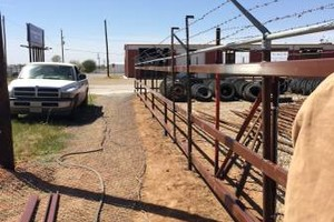 Photo #3: Welding services, from metal or wood fence work to tree removal