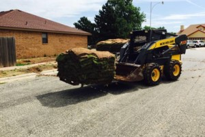 Photo #3: Sod, Dirt work and Landscape Services - High Plains Dirt Tech