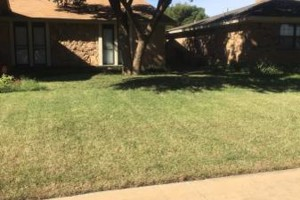 Photo #13: Don't Settle for Cheap Lawn Service! Turf Raider Lawn & Landscape