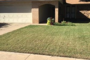 Photo #12: Don't Settle for Cheap Lawn Service! Turf Raider Lawn & Landscape