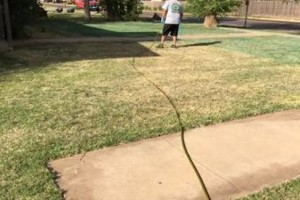 Photo #6: Don't Settle for Cheap Lawn Service! Turf Raider Lawn & Landscape