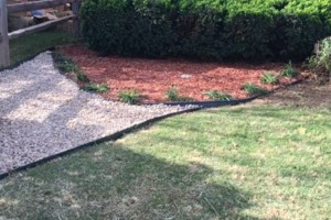 Photo #3: Don't Settle for Cheap Lawn Service! Turf Raider Lawn & Landscape