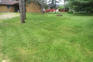 Photo #1: Northwood's Lawn Care