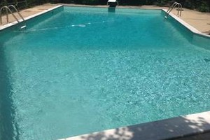 Photo #1: Dan's Home Services LLC - pool and lawn service