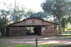Photo #6: HORSE BOARDING - WITH STALLS - $200/MONTH