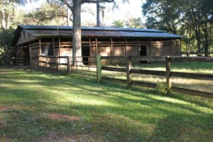 Photo #5: HORSE BOARDING - WITH STALLS - $200/MONTH