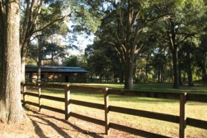 Photo #4: HORSE BOARDING - WITH STALLS - $200/MONTH