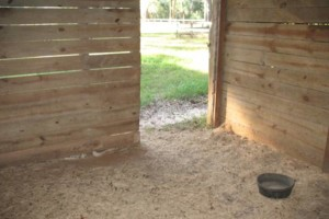Photo #2: HORSE BOARDING - WITH STALLS - $200/MONTH