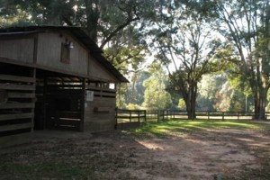 Photo #1: HORSE BOARDING - WITH STALLS - $200/MONTH
