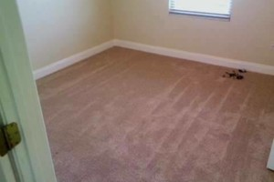 Photo #9: B&C Flooring LLC - Licensed Flooring Installer but not limited!
