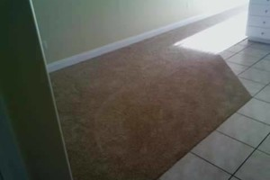 Photo #8: B&C Flooring LLC - Licensed Flooring Installer but not limited!