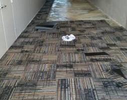 Photo #6: S& J Carpet and Flooring, llc