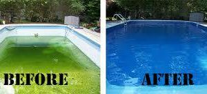 Photo #6: Green Pool and spa cleaning