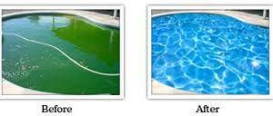 Photo #5: Green Pool and spa cleaning