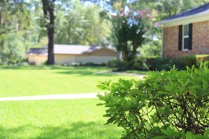 Photo #9: Dickerson Landscaping/ Lawn Care