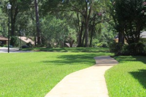 Photo #8: Dickerson Landscaping/ Lawn Care