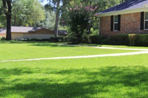 Photo #7: Dickerson Landscaping/ Lawn Care