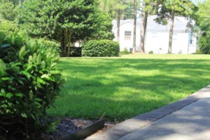 Photo #4: Dickerson Landscaping/ Lawn Care