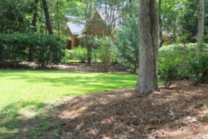 Photo #2: Dickerson Landscaping/ Lawn Care