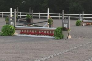 Photo #1: Saw Horse Farm