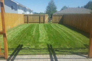 Photo #1: Garden of Eden Lawn Care and Landscaping