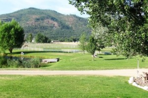 Photo #1: HORSE BOARDING - $75 a month!