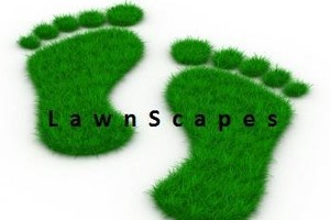 Photo #1: Your Lawn Needs Us