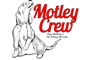 Photo #1: Motley Crew Dog Walking