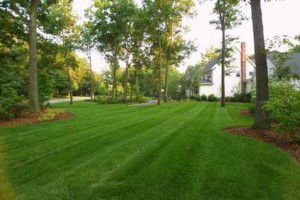 Photo #2: Nate's Lawn and Landscaping