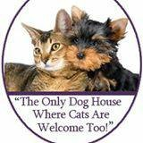 Photo #1: The DOG HOUSE. DOG & CAT Grooming Services