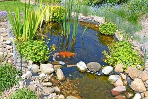 Photo #9: Unique Yardscapes Koi Ponds and Stonework