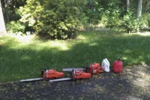 Photo #1: Tree work/ Rob Beaumont Arbor works