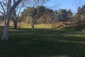 Photo #6: Zak's Lawn & Garden Landscape Inc.