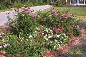 Photo #6: FLOWER GARDENING AND LANDSCAPING