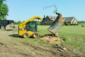 Photo #20: HODGES TREE TRIMMING (WE SPECIALIZE IN DANGEROUS TREE REMOVAL)