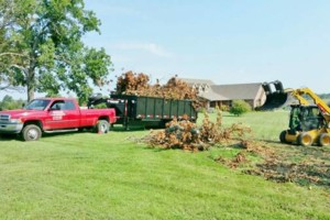 Photo #7: HODGES TREE TRIMMING (WE SPECIALIZE IN DANGEROUS TREE REMOVAL)