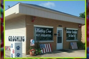 Photo #6: New GROOMING SALON!! Totally Rocks!!!