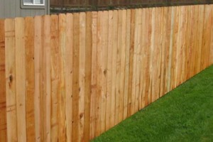 Photo #1: Wood Fence. Fair competitive price!