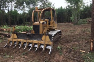 Photo #4: Land Clearing: Mulcher, Excavator, Dozer, Tree removal, gravel