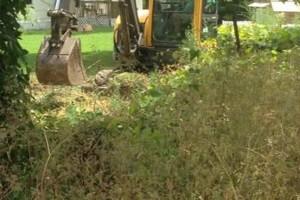Photo #3: Excavator, Backhoe & Brush hog