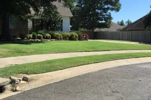 Photo #2: Holloway Lawn Care