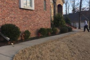 Photo #5: Central Ar lawn care and landscaping