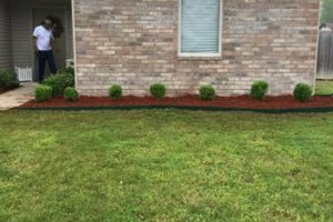 Photo #2: Central Ar lawn care and landscaping