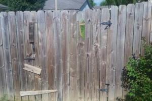 Photo #1: Home improvement /fence/deck