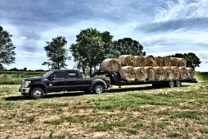 Photo #11: Towing/ Hauling/ Moving/ Pulling