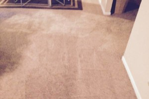 Photo #1: Carpet cleaner (3room living room $89)