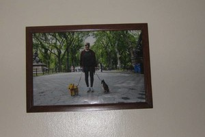Photo #1: LOVABLE PET SITTER/DOGWALKER