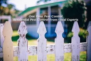 Photo #1: Pest Stops Here Free No Obligation Estimates