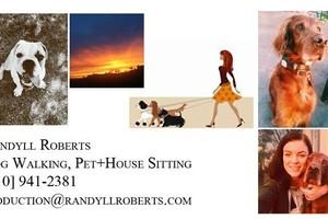 Photo #1: LA Native offers House+Dog Sitting Elite Service